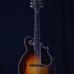2005 Gibson F5L Fern (1)