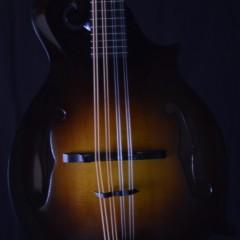 2007 Gibson F9 (2)
