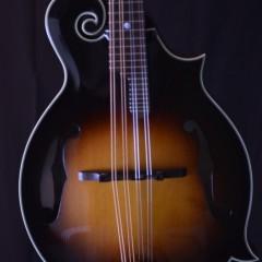 2012 Gibson F5G (2)