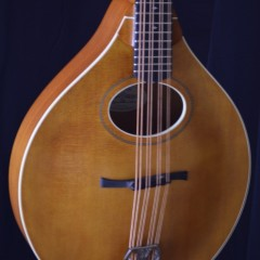 Bitterroot Cello A (2)