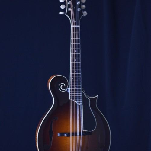 Collings MF DLX (1)