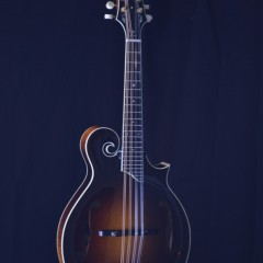 Collings MF5 (1)