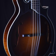 Collings MF5 F