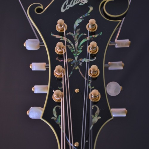 Collings MF5V (3)