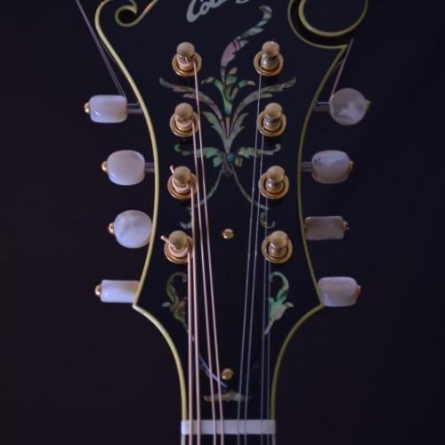 Collings MF5V Fern (3)