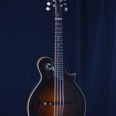 Collings MFGT (1)
