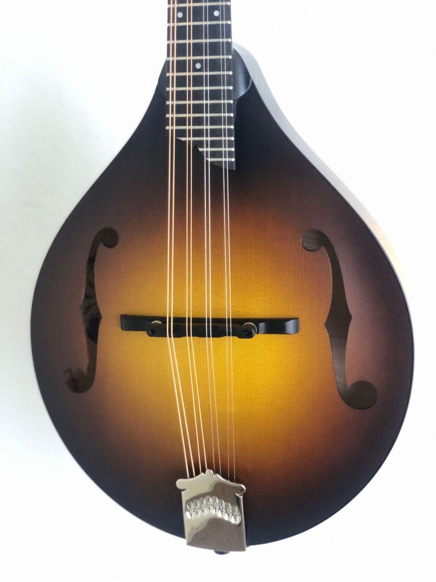 Collings MT Mandolin