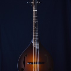 Collings MT Standard  (1)