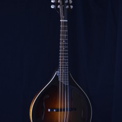 Collings MTGT (1)