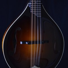 Collings MTGT (2)