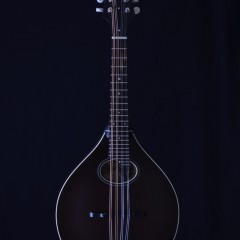 Collings MTO Brown (1)