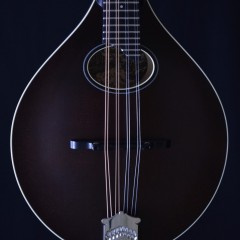 Collings MTO Brown (2)