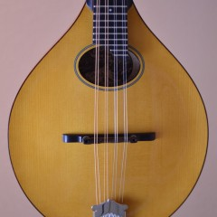 Collings MTO HT (2)