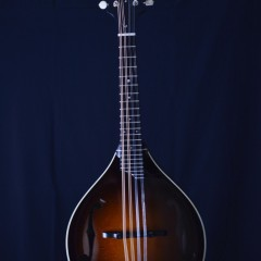 Collings MTWGT (1)