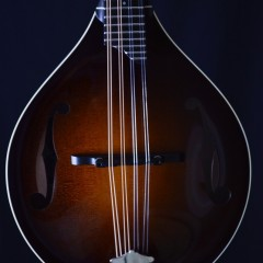 Collings MTWGT (2)