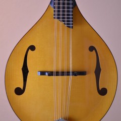 Collings Mandola MTHT (2)