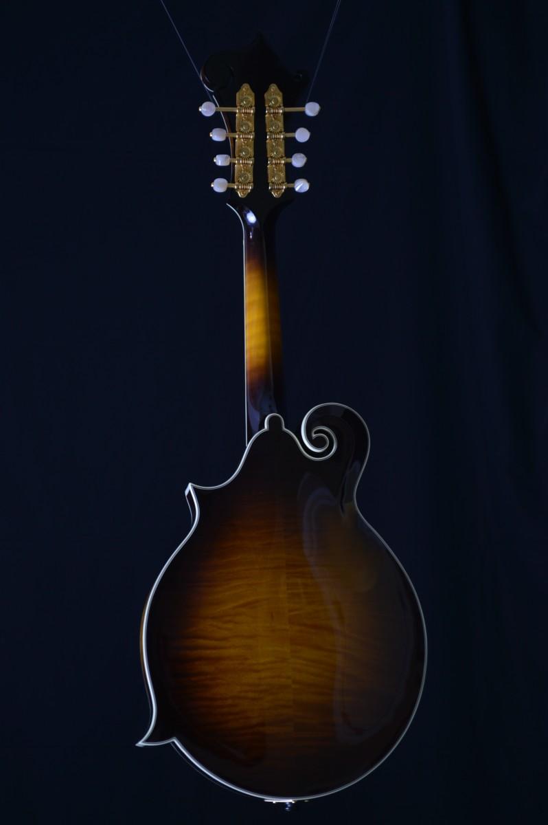 Gibson Sam Bush Mandolin Mandolin Store