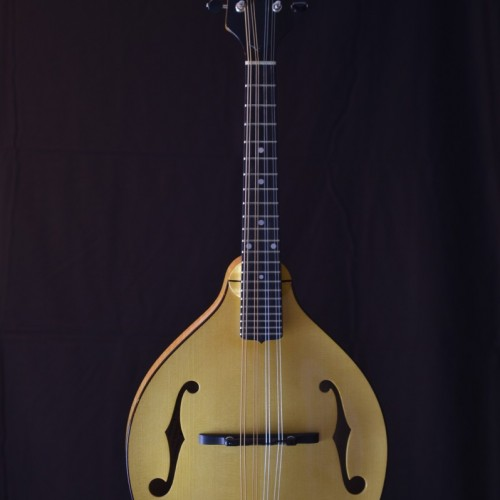 Pava Player Nat (1)