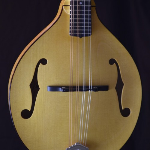 Pava Player Nat (2)