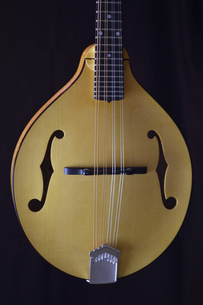 Pava Player Model A Mandolin Blonde Tortoise