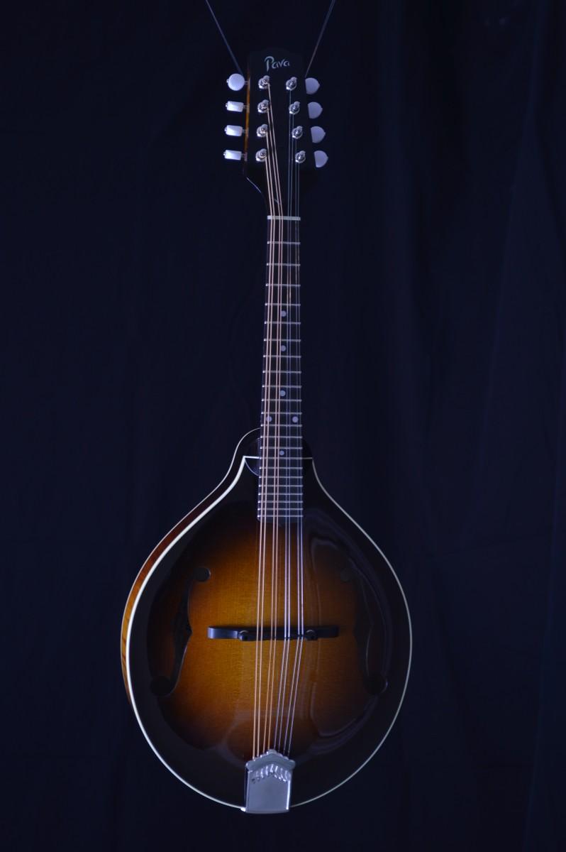how to play vibrato on mandolin