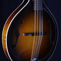Pava Player SB (2)