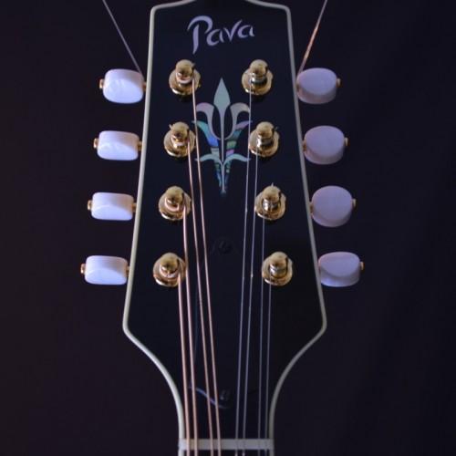 Pava Pro A (3)