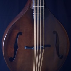 Weber Gallatin A F Cello (2)
