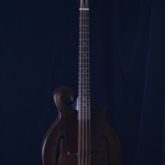 Weber Gallatin F Cello (1)