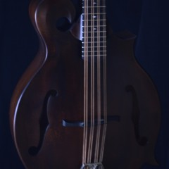 Weber Gallatin F Cello (2)