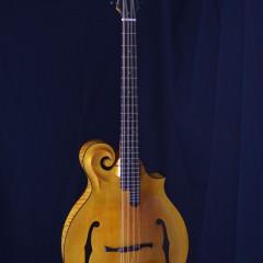 Weber Yellowstone Cello HT (1)