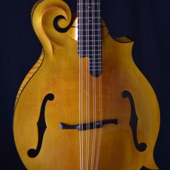 Weber Yellowstone Cello HT (2)
