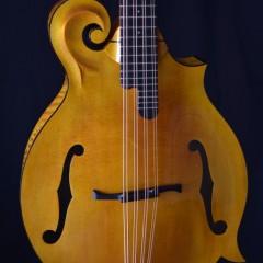 Weber Yellowstone Cello HT (2)