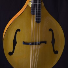 Yellowstone HT A Cello (5)