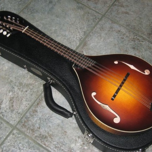 wsprodlg_collings_mandola_(1)
