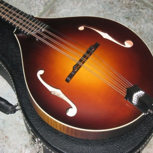 wsprodlg_collings_mandola_(2)