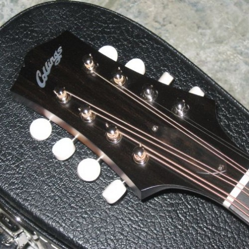 wsprodlg_collings_mandola_(3)