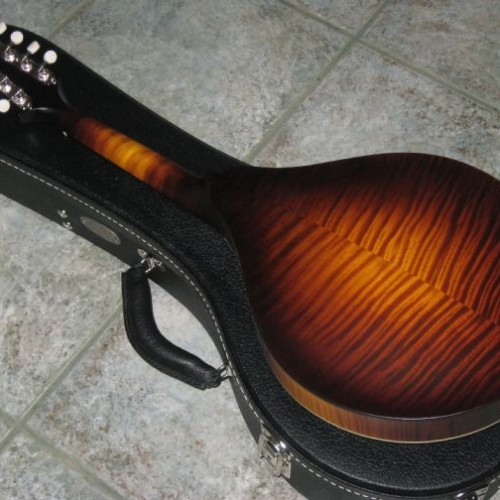wsprodlg_collings_mandola_(4)