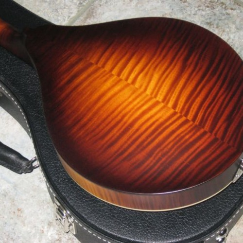 wsprodlg_collings_mandola_(5)