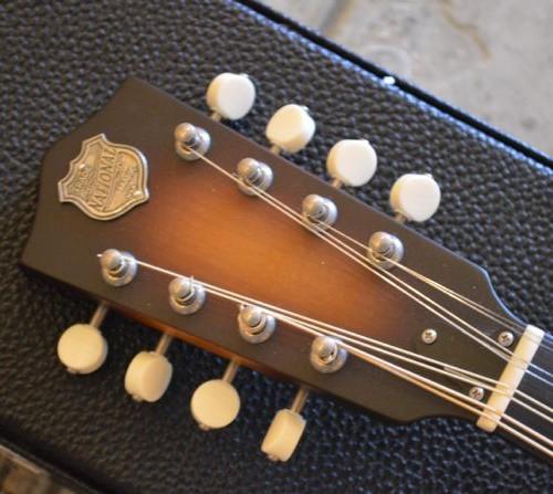 wsprodlg_used_national_mandolin_(3)