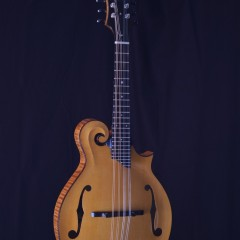 Collings MF GT Wide Honey (1)