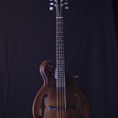 Weber Gallatin F Mandola (1)