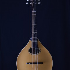 Collings MTO Vintage (1)