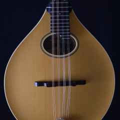 Collings MTO Vintage (2)