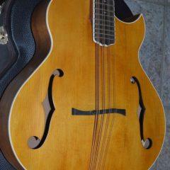 Bitteroot Cutaway Cello (2)