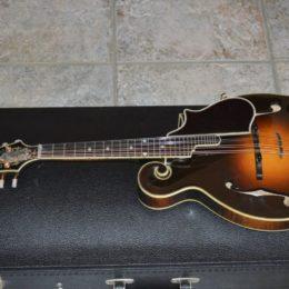 2001 Gibson Fern (1)