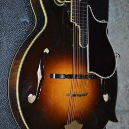 2001 Gibson Fern (2)