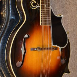 Previously Sold Page 11 Of 16 Mandolin Store